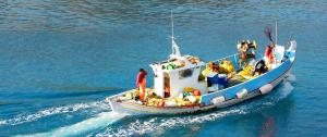 Έλεγχος Αλιείας